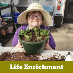 Life Enrichment